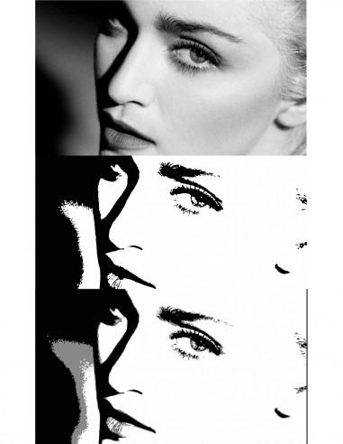 vectoriza tu s fotos en corte de vinil