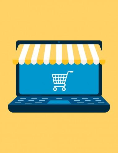 creación de paginas web con carrito de compras